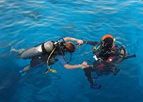 Introductie duiken in Hurghada met Seahorse Divers, Nederlands PADI duikcentrum en Nederlandse PADI duikschool