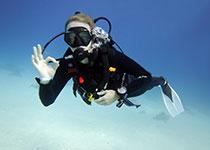 Nederlandse PADI Open Water Diver duikcursus in Hurghada. Padi open water duikbrevet halen hurghada rode zee egypte, leren duiken Hurghada Egypte, Seahorse Divers, Nederlandse PADI duikschool en Nederlands PADI duikcentrum, PADI Duikopleidingen, PADI Duikcursus, PADI Duikopleiding, Hurghada, PADI Open Water Diver duikcursus Hurghada egypte