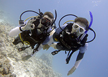 Leren duiken in Hurghada Egypte, Leren duiken in Hurghada met een PADI duikcursus bij Seahorse Divers, Nederlands PADI duikcentrum en Nederlandse PADI duikschool. Leren duiken in Hurghada doe je met Seahorse Divers. PADI Duikbrevet halen in hurghada Egypte