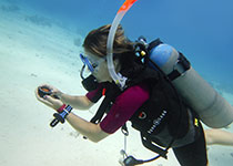 Leren duiken in Hurghada, Rode Zee, Egypte. Nederlandse PADI Duikopleidingen in Hurghada, Duikopleiding in Hurghada, Duikopleiding in Hurghada, PADI Open Water Diver Hurghada, Duiken leren in Hurghada. Padi Hurghada.