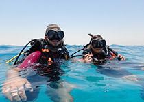 Seahorse Divers. Nederlandse PADI Duikschool Hurghada, Rode zee, Egypte. Nederlandstalige PADI Duikcursussen Hurghada, Nederlandstalige PADI Duikopleidingen Hurghada, Rode zee, Egypte