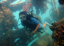 Leren duiken Hurghada Egypte, PADI Advanced Open Water Diver duikcursus Hurghada, Nederlandse PADI duikschool en Nederlands PADI duikcentrum, duikcursus, duikcursus Hurghada, Nederlandse PADI Duikopleiding, Hurghada, Rode Zee, Egypte