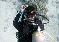 Learn how to dive in Hurghada with the PADI diving school Seahorse Divers, PADI Diving courses in hurghada, Diving course in hurghada, PADI Advanced Open Water Diver diving course in Hurghada