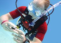 PADI Adventure Duik Hurghada, Rode Zee, Egypte. Leren duiken Hurghada Egypte, Nederlandse PADI duikschool Seahorse Divers, Hurghada, PADI Adventure Dive Hurghada, Rode Zee, Egypte