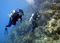 Leren duiken Hurghada Egypte, Nederlandse PADI duikcursus, PADI duikcursus Hurghada, PADI Deep Diver Specialty Hurghada Egypte. Seahorse Divers, Nederlandse PADI duikschool, Hurghada, Rode zee, Egypte