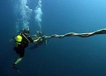 Leren duiken Hurghada Egypte, Nederlandse PADI duikschool, duikcursus Hurghada, PADI Specialties Hurghada, Rode Zee, Egypte