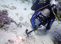 Introductie duiken in Hurghada, Rode Zee, Egypte met Seahorse Divers, Nederlands PADI duikcentrum en Nederlandse PADI duikschool. intro duik hurghada egypte, introductieduik hurghada egypte. Proefduiken Hurghada