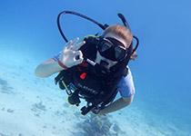 Duiken in Hurghada, Dagelijks Duiken in Hurghada, Nederlandse PADI Duikschool en Nederlands PADI Duikcentrum, Nederlandse PADI Duikcursus, voor geslaagde duiken tijdens je duikvakantie in Hurghada, Rode Zee, Egypte. padi hurghada