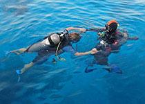 Introductie duiken in Hurghada met Seahorse Divers, Nederlands PADI duikcentrum en Nederlandse PADI duikschool Hurghada, Egypte, Duiken Hurghada, Rode Zee, Egypte