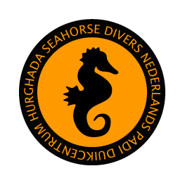 Duiken in Hurghada met Seahorse Divers. Nederlands PADI duikcentrum en Nederlandse PADI duikschool in Hurghada, Rode Zee, Egypte. Fotoservice Seahorse Divers Hurghada