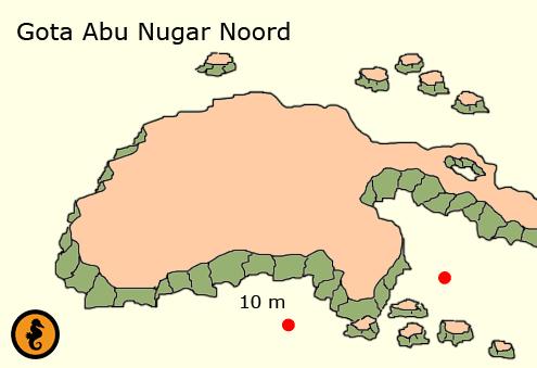 Diving in Hurghada, dive maps Hurghada, Dive map Hurghada, Diving Hurghada, Red Sea, Egypt, Dive sites in Hurghada, Dive spots in Hurghada, Dive locations in Hurghada, gota abu nugar