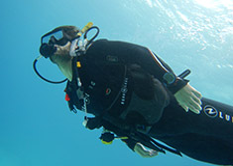 Duiken in Hurghada, Rode Zee, Egypte, Duiken in Hurghada, duikvakantie in Hurghada, Rode Zee, Egypte. Seahorse Divers, Nederlands PADI duikcentrum en PADI duikschool Hurghada, Rode zee, Egypte