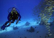 Goede duikuitrusting kopen tips. Duikspullen kopen waar? Seahorse Divers, Nederlands PADI duikcentrum en Nederlandse PADI duikschool in Hurghada, Rode Zee, Egypte