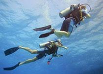 Duikwinkel, Seahorse Divers, Nederlandse PADI duikschool, Hurghada, Rode Zee, Egypte