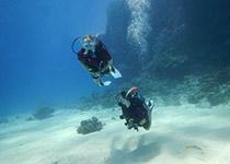 Dagelijks Duiken in Hurghada met Seahorse Divers, Nederlands PADI duikcentrum, Duikpakketten Hurghada, Rode Zee, Egypte.