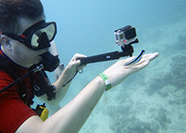 Duiken in Hurghada met Seahorse Divers, voor een geslaagde duikvakantie, El Fanous