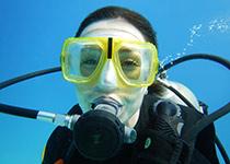 Duiken in Hurghada met Seahorse Divers, Dagelijks Duiken in Hurghada, Nederlands PADI duikcentrum en Nederlandse PADI duikschool voor geslaagde duiken tijdens je duikvakantie in Hurghada, Rode Zee, Egypte, Nederlandse PADI Duikopleiding, Nederlandse PADI duikcursus, dagelijks duiken, wrak duiken, introductie duiken en snorkelen.
