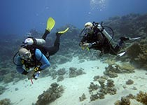 PADI Adventure Diver duikcursus Hurghada, Rode Zee, Egypte. Leren duiken Hurghada Egypte, Nederlandse PADI duikschool Seahorse Divers, Hurghada, PADI Adventure Diver duikcursus Hurghada, Rode Zee, Egypte