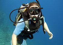 Duiken in Hurghada met Seahorse Divers, Nederlandse PADI duikschool. Voor geslaagde duiken tijdens je duikvakantie in Hurghada, Rode Zee, Egypte. Onderwaterfotografie.