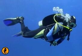 Duikpakket Seahorse Divers