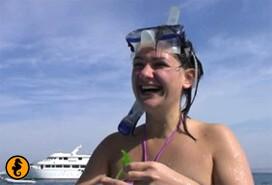 Wrakken Abu Nuhas, Rode Zee, Egypte. Duiken en wrakduiken in Hurghada, Rode Zee, Egypte met Seahorse Divers, Nederlandse Padi duikschool