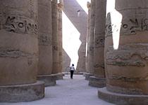 Luxor, Cairo en Quad trips vanuit Hurghada, Rode zee, Egypte. Boek je trip via Seahorse Divers. Nederlandse PADI duikschool in Hurghada. Gevaarlijke dieren en vissen Rode Zee, Egypte.
