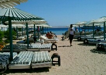 Duikvakantie Hurghada, Rode Zee, Egypte. Tips voor je duikvakantie Hurghada, Rode Zee, Egypte. Duiken in Hurghada met Seahorse Divers, Nederlands PADI duikcentrum en Nederlandse PADI duikschool voor geslaagde duiken tijdens je duikvakantie in Egypte. PADI Duikopleidingen, PADI duikcursus, dagelijks duiken, wrak duiken, introductie duiken en snorkelen.