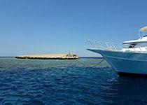 Duiken in Hurghada met Seahorse Divers, Nederlandse PADI duikschool. Voor een geslaagde duikvakantie in Hurghada, Rode Zee, Egypte. De voordelen van duiken.