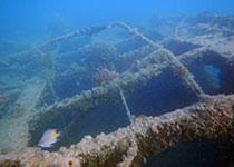 Duiken in Hurghada met Seahorse Divers. Nederlands PADI duikcentrum Hurghada, Rode Zee, Egypte. Wrak Belina