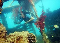 Wrakuiken en duiken in Hurghada, Rode Zee, Egypte, wrak El Mina